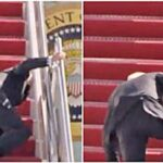 Serious Apprehension as President Biden falls Multiple Times While Climbing steps